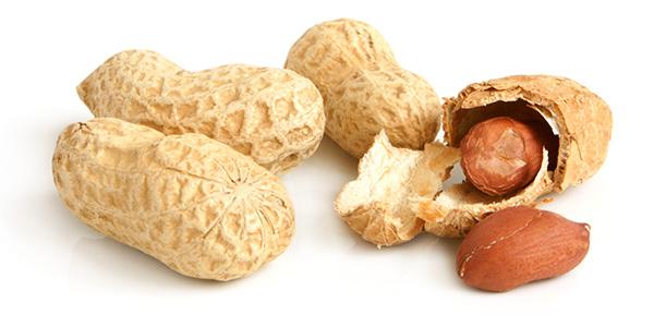 Die Erdnuss ist eigentlich gar keine Nuss, sondern eine Hülsenfrucht