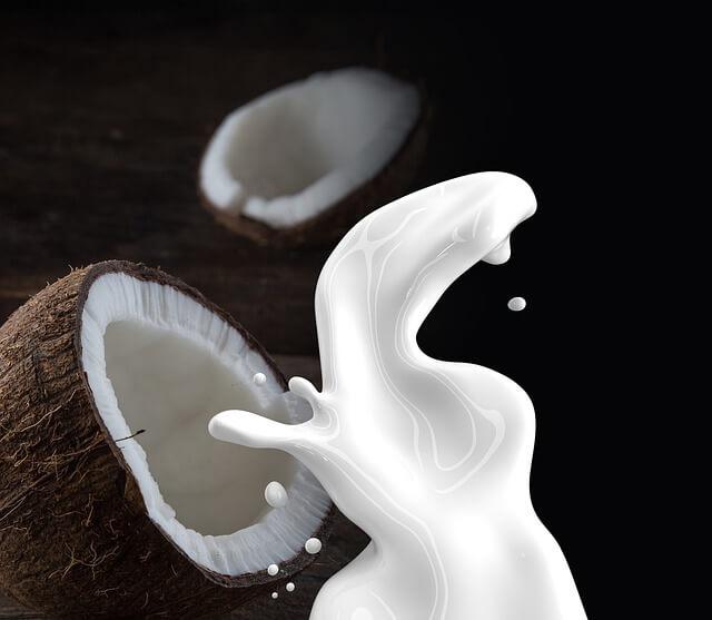 Kokosnuss ist gesund