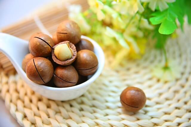 Macadamia Nüsse